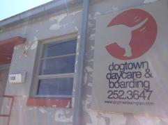 Dogtown3